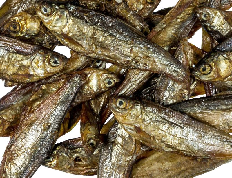 Fish 4-7cm