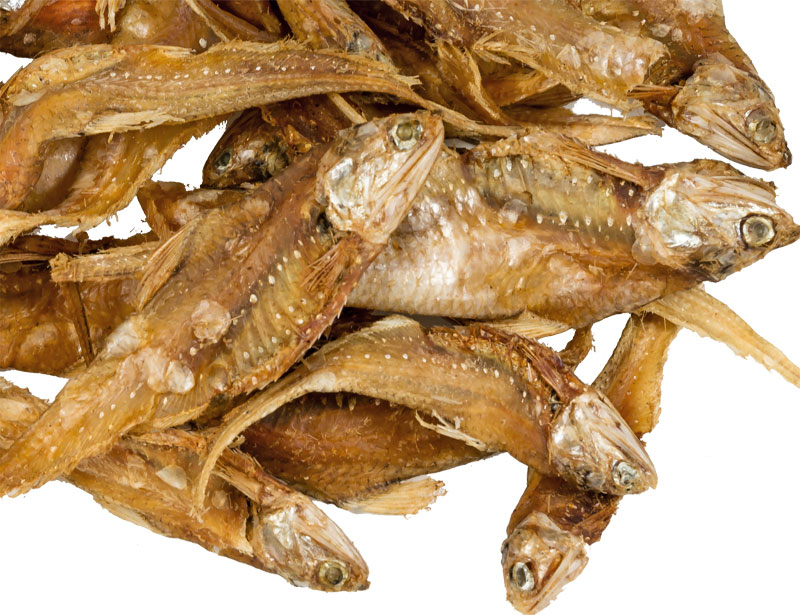 Golden Anchovies