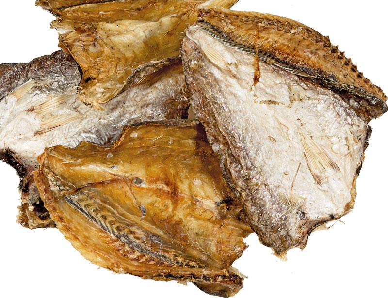 Croaker Fisch (Trommler)