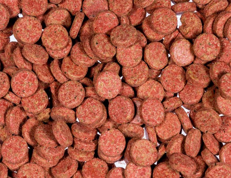 Hafttabletten Basis rot