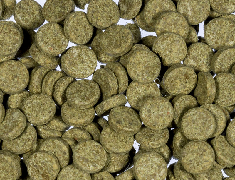 Hafttabletten Basis grün