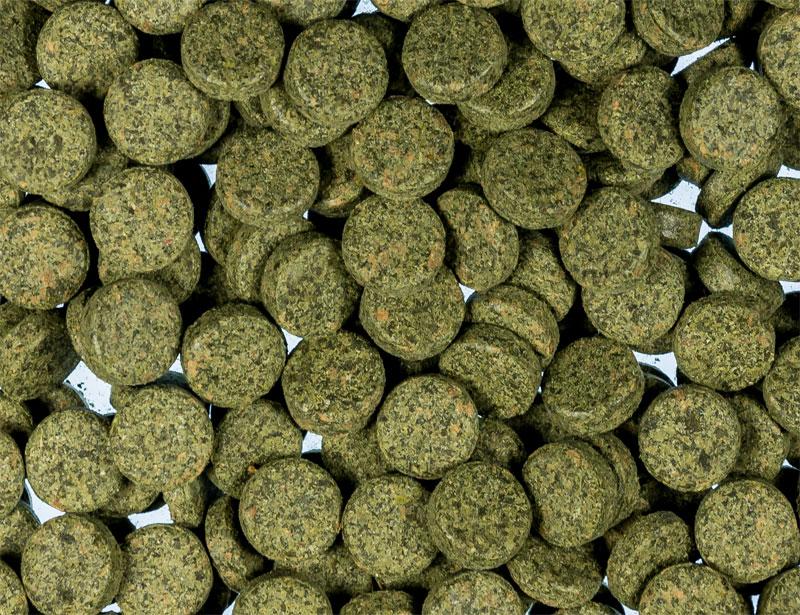 Tablets Spirulina Adhesive