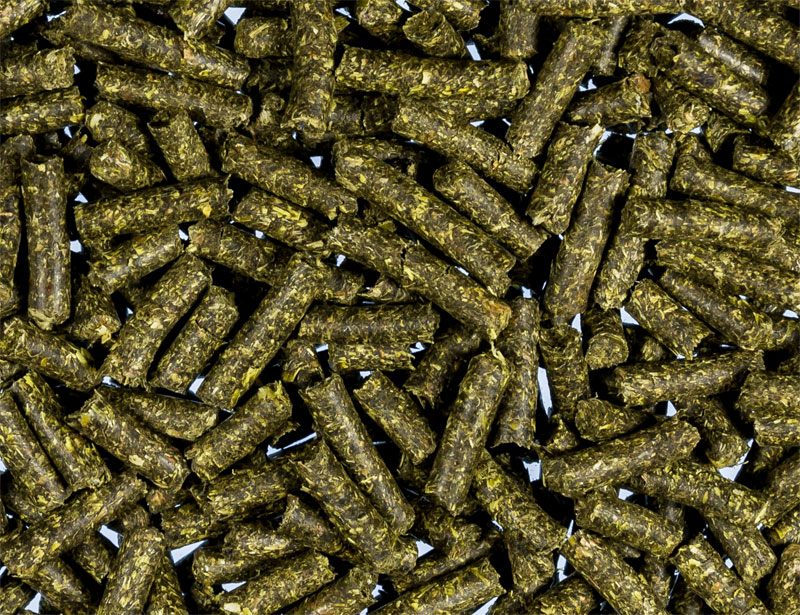 Reptile Herb Pellets Premium 4mm