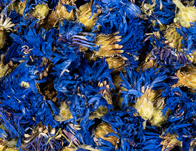 Cornflower Blue 1st grade