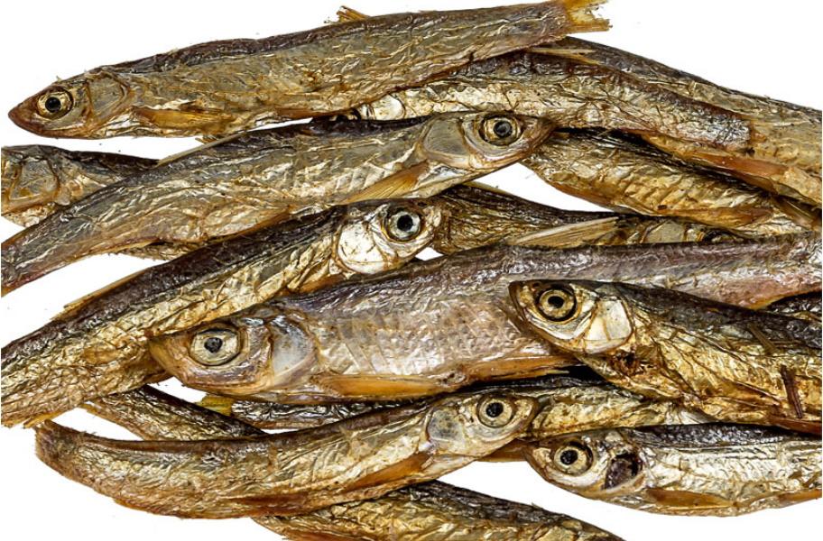 Wholesale dried fish