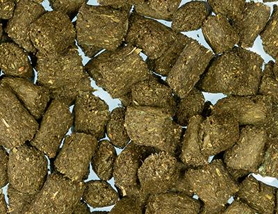 Hundesnack Kräuter
