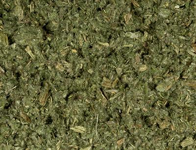 Artichoke leaves cut